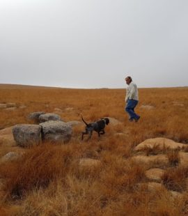 Another day at the office - SAFTC expert and human friend on the lookout for francolin
